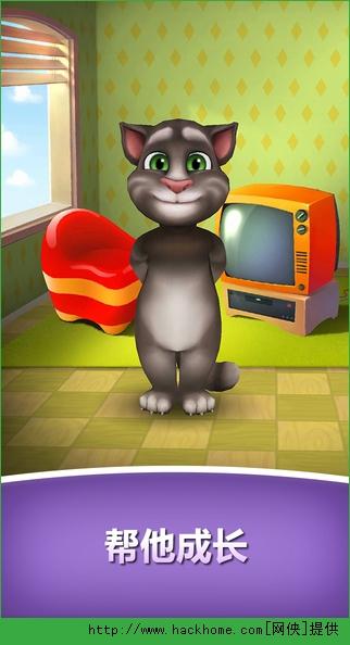 我的汤姆猫喂养版ios版图2: