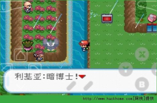 口袋妖怪暗之冰花官网IOS版图2: