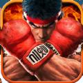 全民格鬥王官網iOS版手遊下載 v37696