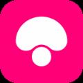蘑菇街触屏版网页版app下载 v9.2.2.4073
