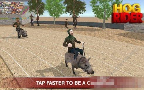 猪骑士游戏官方安卓版(HOG RIDER)图3: