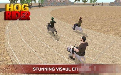 猪骑士游戏官方安卓版(HOG RIDER)图5: