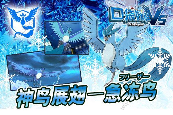 《口袋妖怪VS》新精灵:急冻鸟来袭!