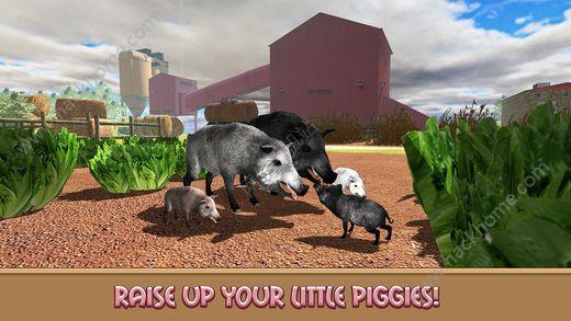 家猪模拟器的生活游戏ios版图2: