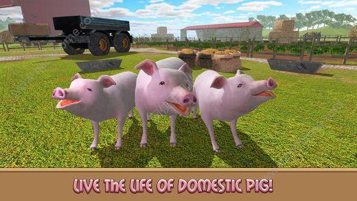 家猪模拟器的生活游戏ios版图4: