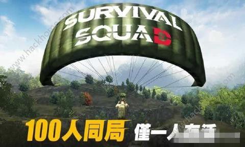 生存小队手游官网下载正版(survival squad)图2: