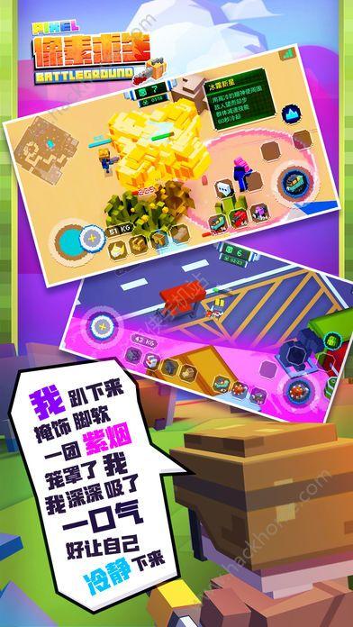 像素求生游戏官方网站下载安卓版图2:
