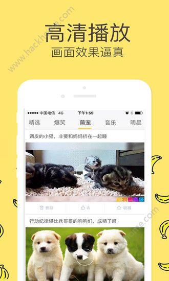 香蕉tv手机免费视频app官网下载图2: