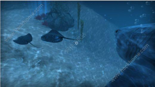 VR狂鲨官方游戏手机版图4: