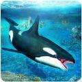 虎鲸模拟器3D游戏