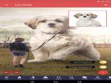 Pixomatic手机app v2.0.2