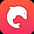 海豚��B壁�手�C�件app下�d v1.1