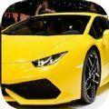 赛车模拟器3D游戏安卓最新版下载 v1.7