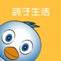 鸽子生活app