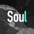Soul�件