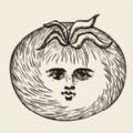 专注番茄安卓app下载安装 v1.0
